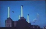Pink Floyd – Animals (album)