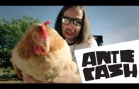Powerplay 29.9. Ante Cash – Ante